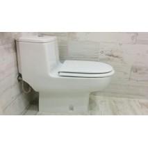 Tapa wc Modelo Antares Jacob Delafon Compatible