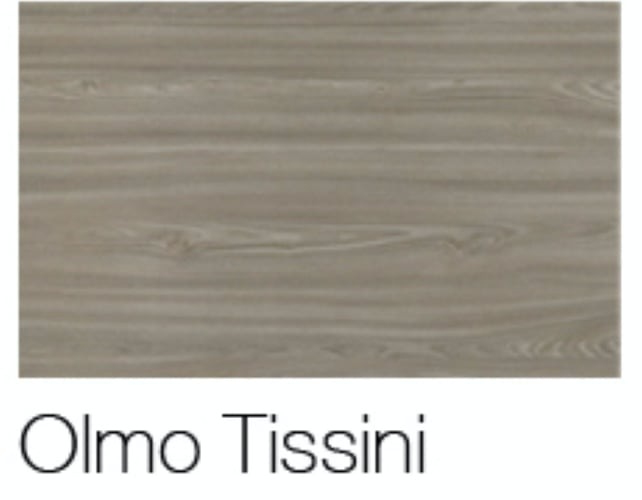 COLOR OLMO TOSSINI